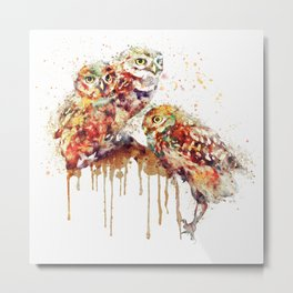 Three Cute Owls Metal Print