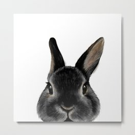 Netherland Dwarf rabbit Black, illustration original painting print Metal Print