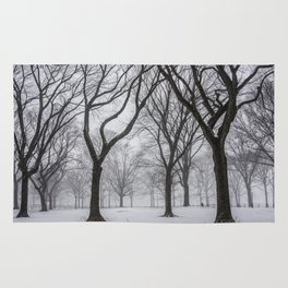 NYC Winter In Central Park Rug