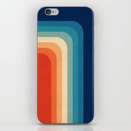 Retro 70s Color Palette III iPhone Skin