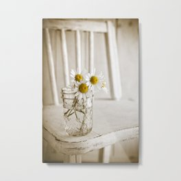 Simple White Daisy Flowers Metal Print