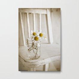 Simple White Daisy Flowers Metal Print