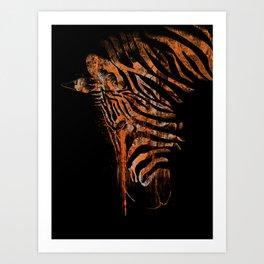 Zebra Mood Art Print