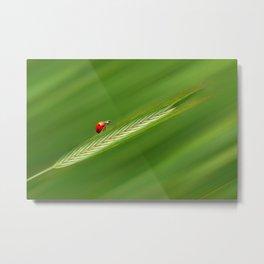 Ladybug green 74 Metal Print