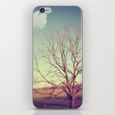 Given To Dreams iPhone & iPod Skin