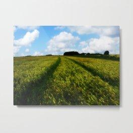 Warm Meadow Metal Print