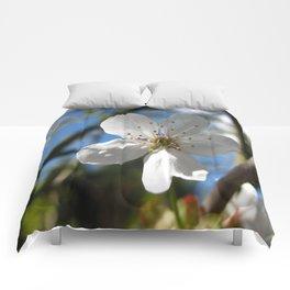 White Blossom Comforters