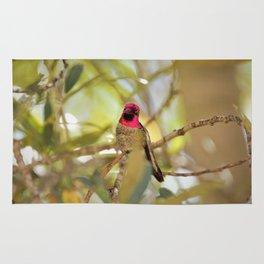 Hummingbird Beauty Rug