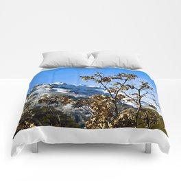 Sanábria, Spain Comforters
