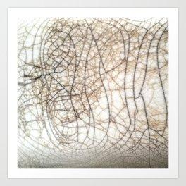 Raku crackles Art Print