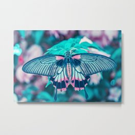 Teal and Peach Butterfly Metal Print