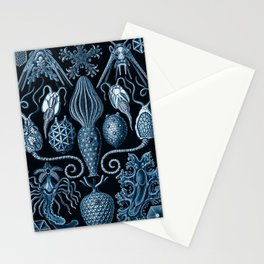Ernst Haeckel Amphoridea Sea Life Stationery Cards
