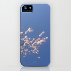 Cherry Blossoms/Sakura (Japan)--2015 Slim Case iPhone (5, 5s)
