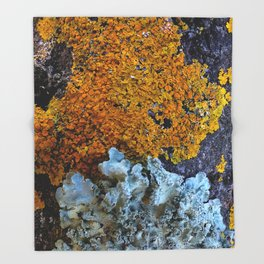Tree Bark Pattern # 6 with Orange and Blue Lichen Throw Blanket