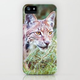 Lynx in the grass iPhone Case