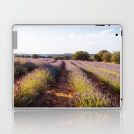 Lavender Fields at Sunset Laptop & iPad Skin