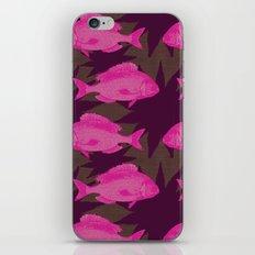 Sealacampus iPhone & iPod Skin