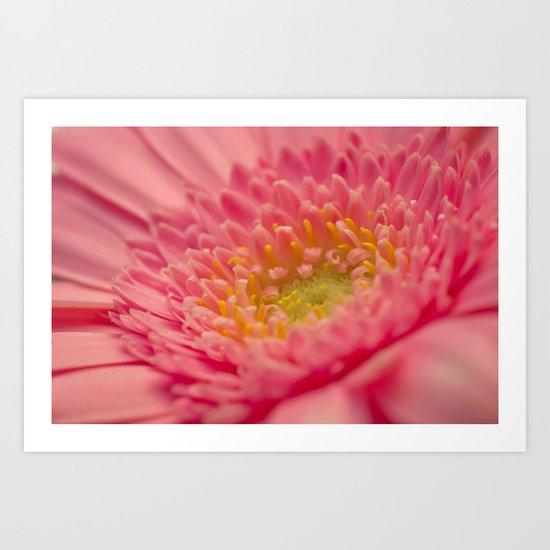 Pink Germini. Art Print