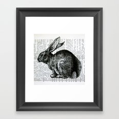 French Rabbit Framed Art Print
