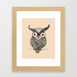 An Owl.  Framed Art Print