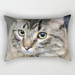 house cat Rectangular Pillow