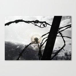 Barbed Wish Canvas Print