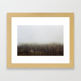 Angeles Forest Fog Framed Art Print