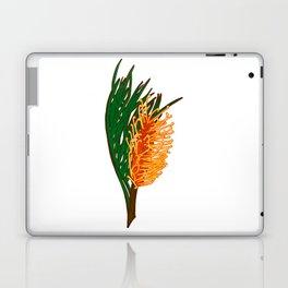 Australian Native Floral Illustration - Beautiful Banksia Flower Laptop & iPad Skin