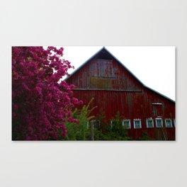 SpringBarn Canvas Print