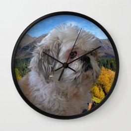 Denali - Loyal Lap-Dog Wall Clock