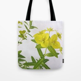 Euphorbia Cornigera Tote Bag