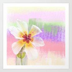 Sun bathing tulip Art Print