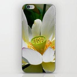 Beauty-0 iPhone Skin