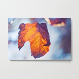 Shine in my Heart Metal Print