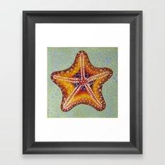 Sea Star Orange Framed Art Print