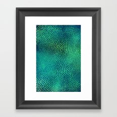 FluO scales Framed Art Print