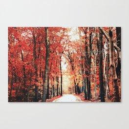 Autumn Road. Canvas Print