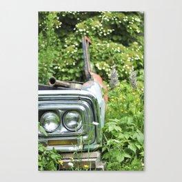 Deer Isle Series: Go Green Canvas Print