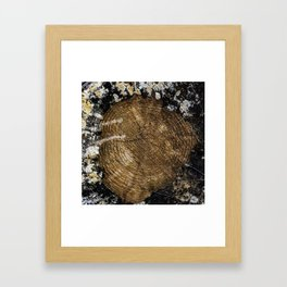 Counting the Years Framed Art Print