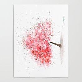 Kwanzan Cherry Tree Poster
