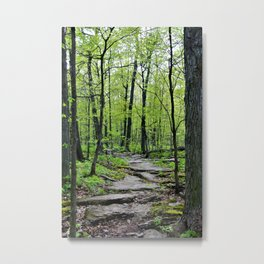 Lead and I will Follow You into the Woods by Reay of Light Metal Print