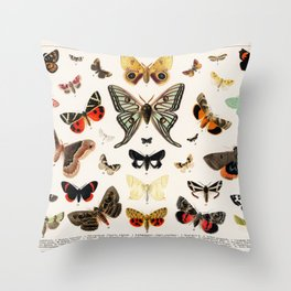 Butterfly Butteflies Mariposa Mariposas Papillon Papillons - Vintage Book Illustration Throw Pillow