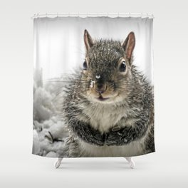Adorable Praying Squirrel..Feed ME!! Shower Curtain