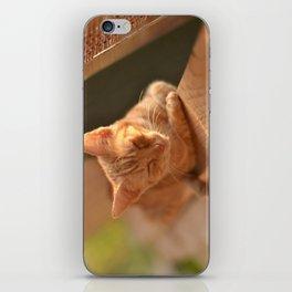 Sweet Oblivion iPhone Skin