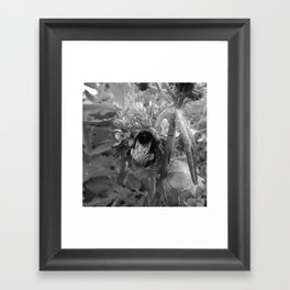 Bee Friends #2 (Black and White) Framed Art Print