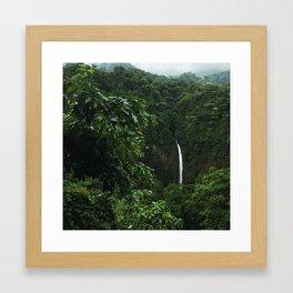 Rainforest Gems Framed Art Print