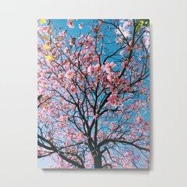 spring nuances Metal Print