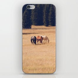 Montana Collection - Horses on the Ranch iPhone Skin