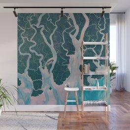 Sundarbans Mangroves from space Wall Mural