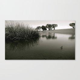 Tranquilo Canvas Print